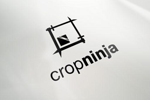 logo_perspective_cropninja