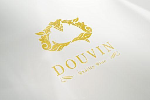 logo_perspective_douvin